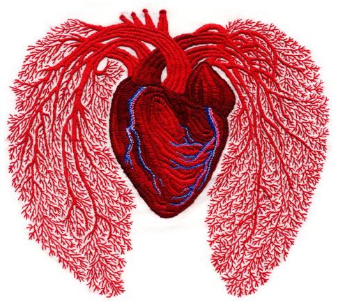 andrea_dezso_heart